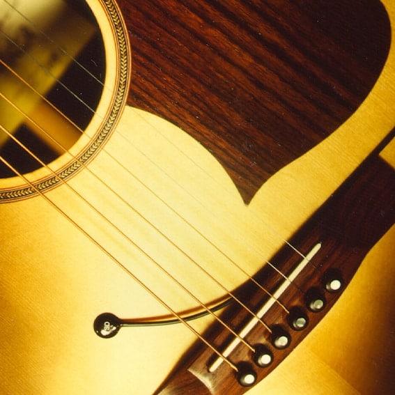 PU-1 guitar / strings
